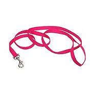 Coastal Pet Products 1 Inch X 6 Foot Flamingo Pink Leash