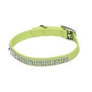 Coastal Pet Products 3/8 Inch Lime Nylon Jewel Collar