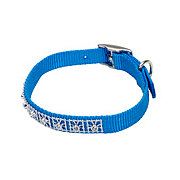 Coastal Pet Products 3/8 Inch X 12 Inch Lagoon Blue Jewel Collar