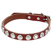 Coastal Pet Products 5/8 Inch X 17 Inch Leather Collar