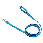 Coastal Pet Products 5/8 Inch X 6 Foot Lagoon Blue Leash