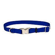Coastal Pet Products Adjustable Nylon Titan Blue 1 Inch Metal Buckle Collar