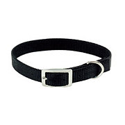"Coastal Pet Products Black 3/8"" Nylon Collar"