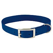 Coastal Pet Products Blue 1 Inch X 22 Inch Nylon Collar