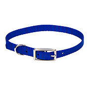 "Coastal Pet Products Blue 3/8"" Nylon Collar"