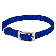 "Coastal Pet Products Blue 5/8"" Nylon Collar"