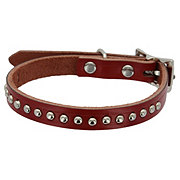 Coastal Pet Products Leather Dog Collar with Spots