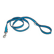 Coastal Pet Products Pet Attire Pro Bright Blue with Grey 3/4 Inch x 6 Feet Leash