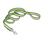 Coastal Pet Products Pet Attire Pro Bright Green with Grey 3/4 Inch x 6 Feet Leash