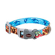 Coastal Pet Products Sublime Surf, Sun & Beach 5/8 Inch Adjustable Collar Size Small