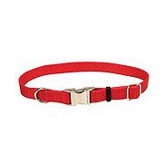 Coastal Pet Products Titan Red 1 Inch Metal Buckle Adjustable Nylon Collar