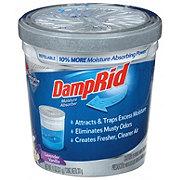 DampRid Refillable Moisture Asborber
