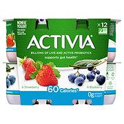 Dannon Activia Non-Fat Blueberry & Strawberry Yogurt Variety Pack