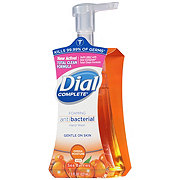 Dial Complete Omega Moisture Hand Wash