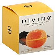 Divino Sorbet Filled Tangerine