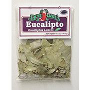 Don Juan's Eucaliptus Leaves