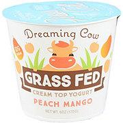 Dreaming Cow Peach Mango