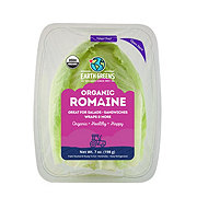 Earth Greens Organic Romaine Lettuce Leaves
