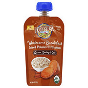 Earth's Best Organic Sweet Potato Cinnamon Pouch