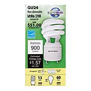 EarthBulb CFL Light Bulb