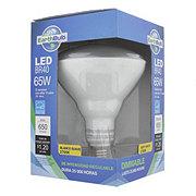 EarthTronics 10 W BR40 2700K Soft White Dimmable Bulb