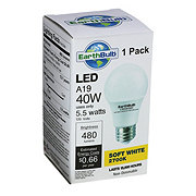 EarthTronics 480 Lumen 5.5 watt A19 LED Soft White EarthBulb