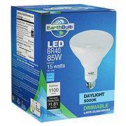 EarthTronics BR40 LED 85W 1100 Lumens Daylight