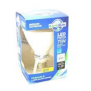 Earthtronics LED -Par 30 75 Watt Dimmable Light Bulb