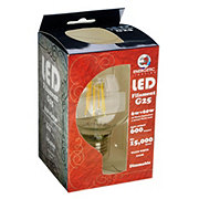 Energetic Lighting G25 Vintage LED Filament 60 Watts Globe Clear Light Bulb