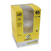 Energetic Lighting LED 3W Yellow A19 Light Bulb