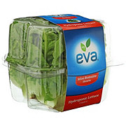 Eva Mini Romaine Hearts