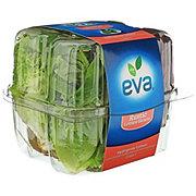 Eva Rustic Lettuce Hearts