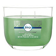 Febreze Home Collections Citrus Herb Dual Wick Candle