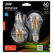 FEIT ELECTRIC A19 LED Filament 60 Watt Soft White Clear