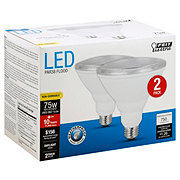 FEIT ELECTRIC Par38 LED 75watt Daylight