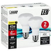 FEIT ELECTRIC R20 LED 45 Watt Daylight Dim