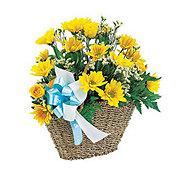 Floral Bouncing Baby Basket - Standard