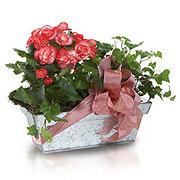 Floral Garden Design Planter