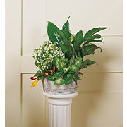 Floral Seasonal Planter