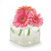 Flowers By Design Standard Gerbera Cube