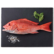 Fresh American Red Snapper Medium, Wild Caught