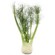 Fresh Anise/Fennel