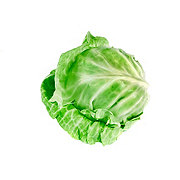 Fresh Baby Green Cabbage