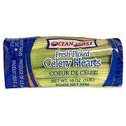 Fresh Celery Hearts