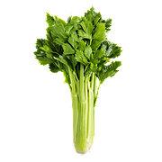 Fresh Celery Stalks