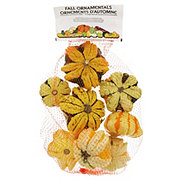 Fresh Daisy Gourds