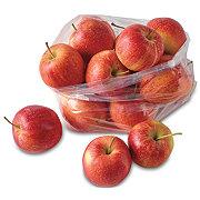 Fresh Gala Apples