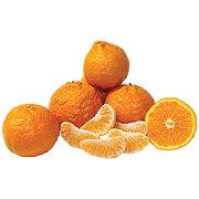 Fresh Gold Nugget Mandarin