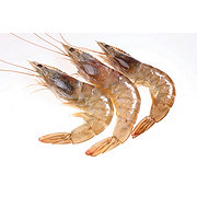 Fresh Gulf White Shrimp Shell-On, Wild Caught