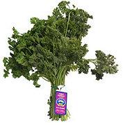 Fresh Organic Curly Parsley